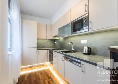 c-417_pronajem_apartmany_praha_albertov_rental_apartments-06-1